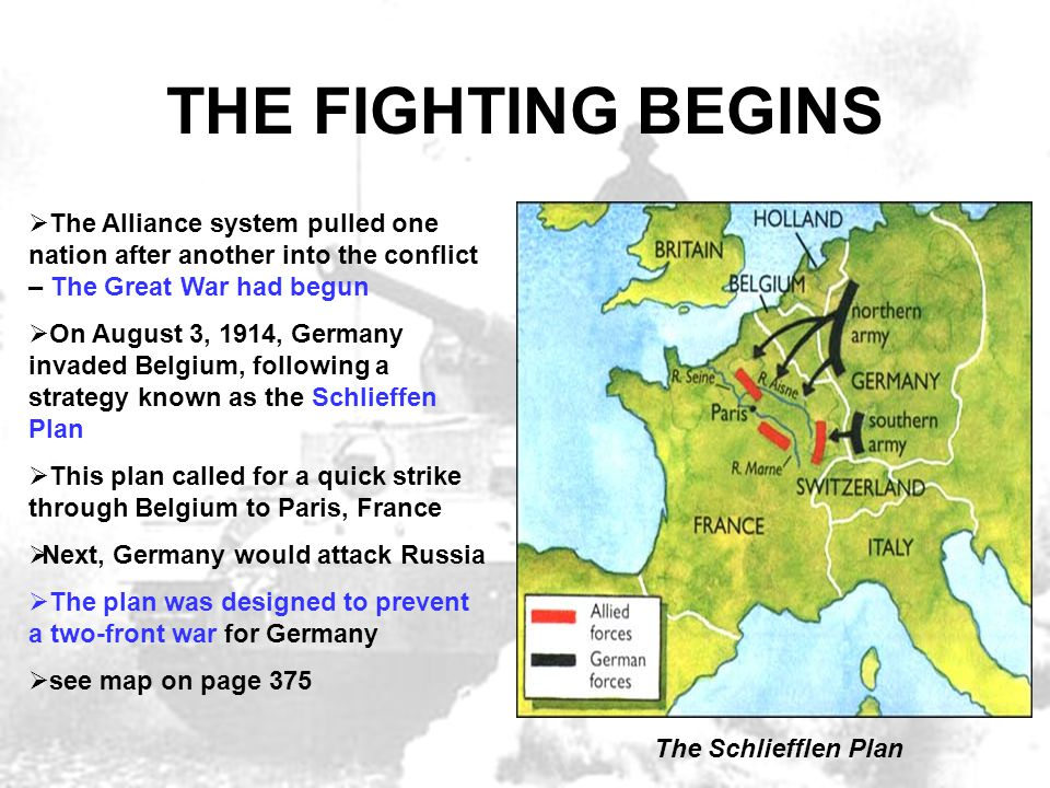 THE FIGHTING BEGINS The Alliance system pulled one nation after another into the conflict – The Great War had begun.
