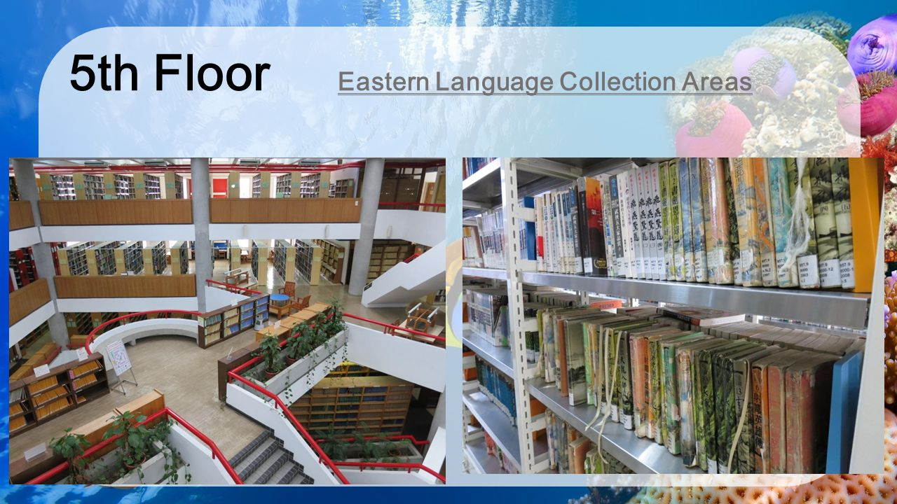 5th Floor Eastern Language Collection Areas