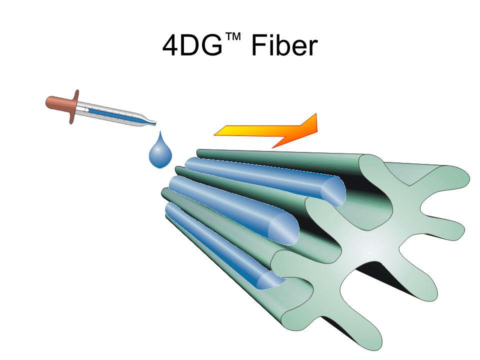 4DG™ Fiber