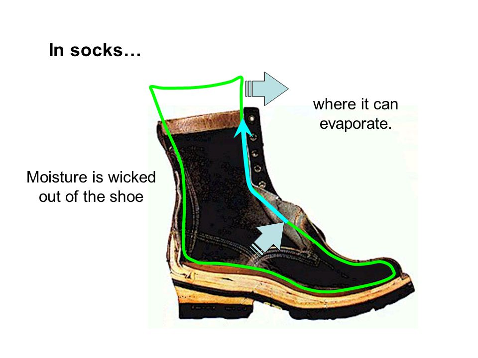 In socks… where it can evaporate. Moisture is wicked out of the shoe