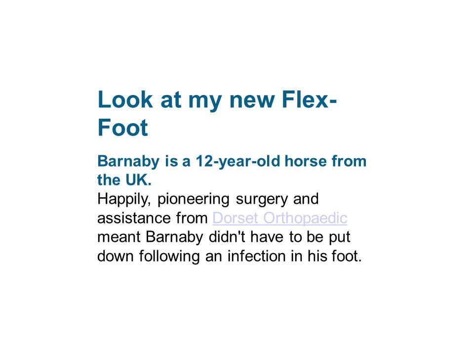 Look at my new Flex-Foot