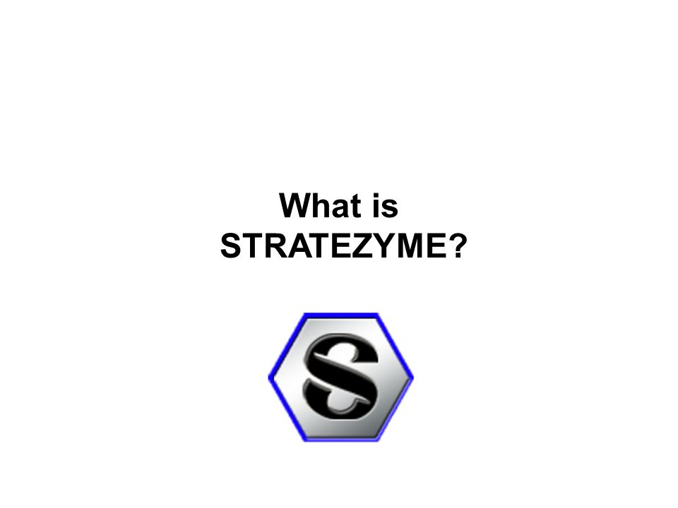 What is STRATEZYME
