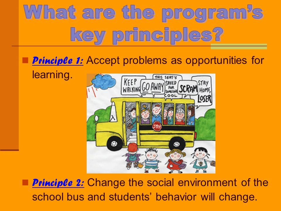 What are the program's key principles
