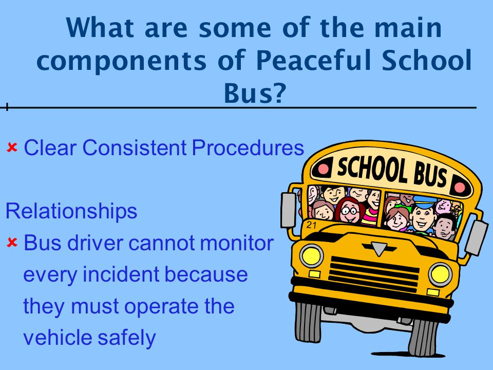 What are some of the main components of Peaceful School Bus