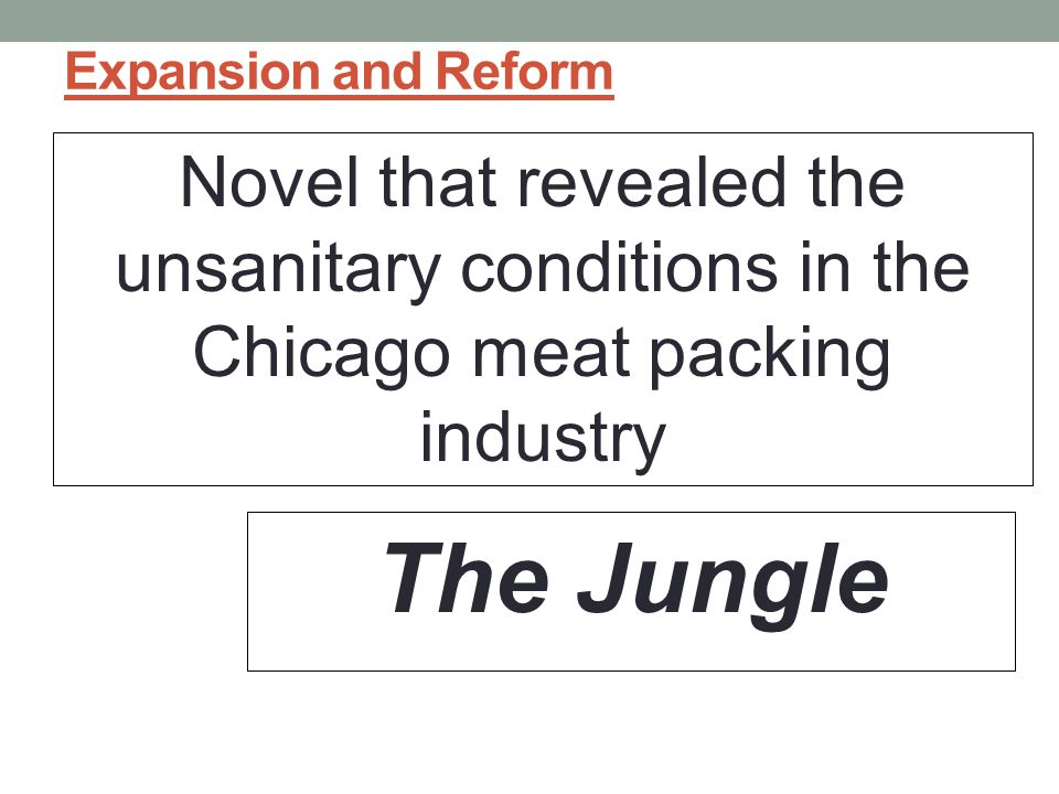Expansion and Reform Novel that revealed the unsanitary conditions in the Chicago meat packing industry.