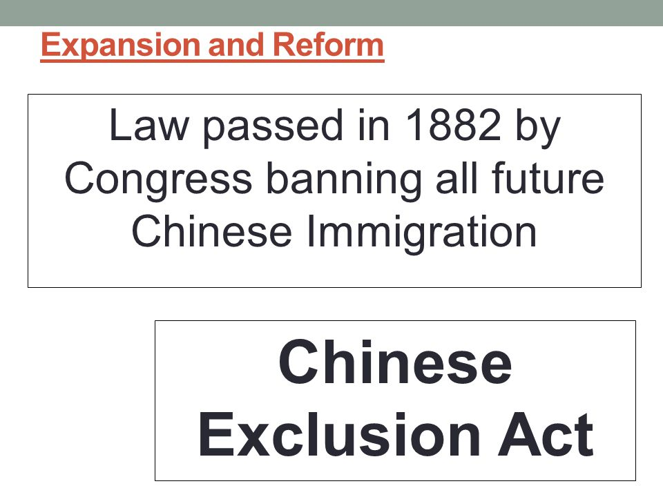 Law passed in 1882 by Congress banning all future Chinese Immigration