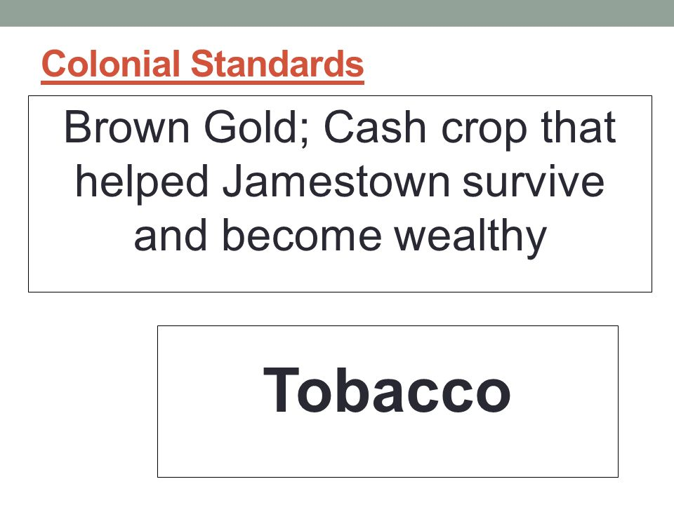 Brown Gold; Cash crop that helped Jamestown survive and become wealthy