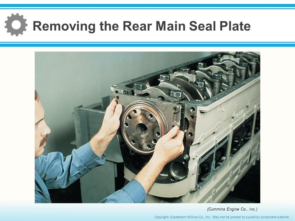 Removing the Rear Main Seal Plate