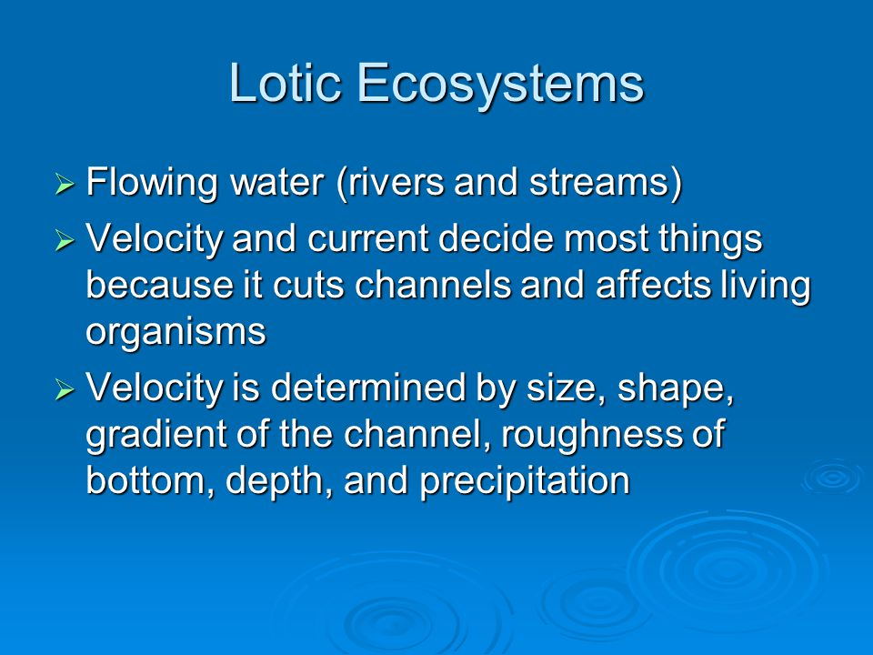 Lotic Ecosystems Flowing water (rivers and streams)