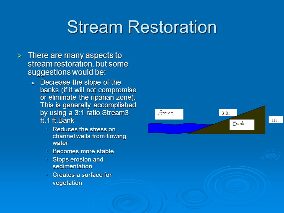 Stream Restoration There are many aspects to stream restoration, but some suggestions would be: