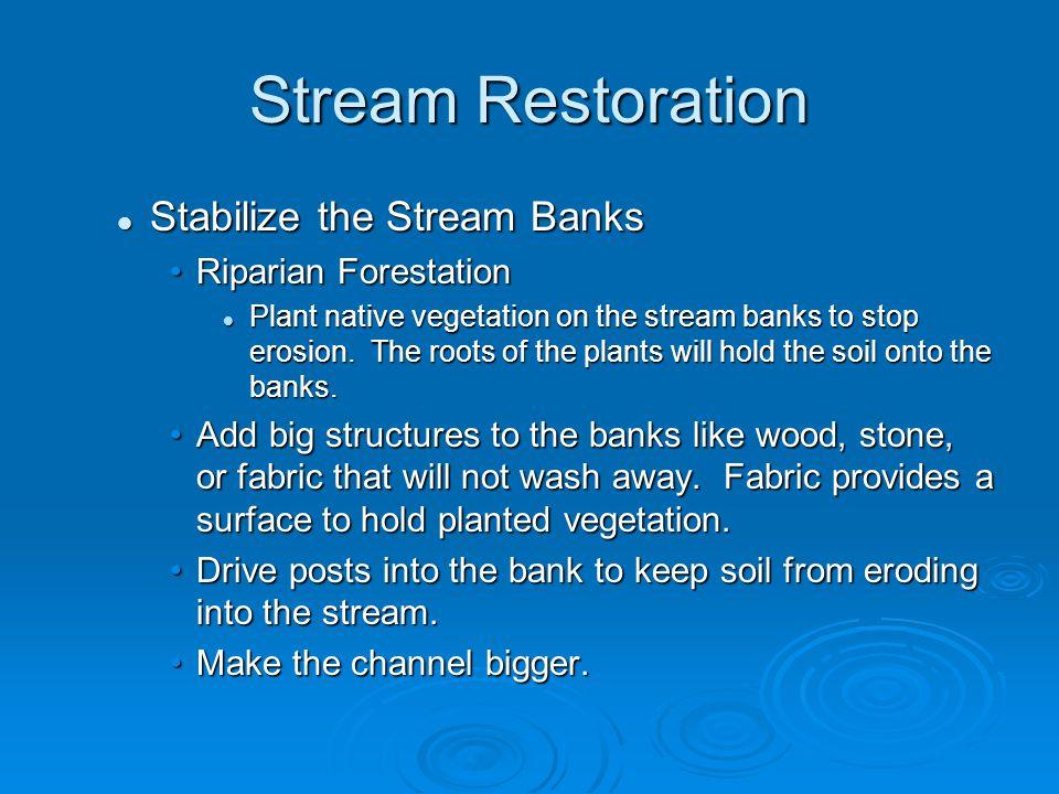 Stream Restoration Stabilize the Stream Banks Riparian Forestation