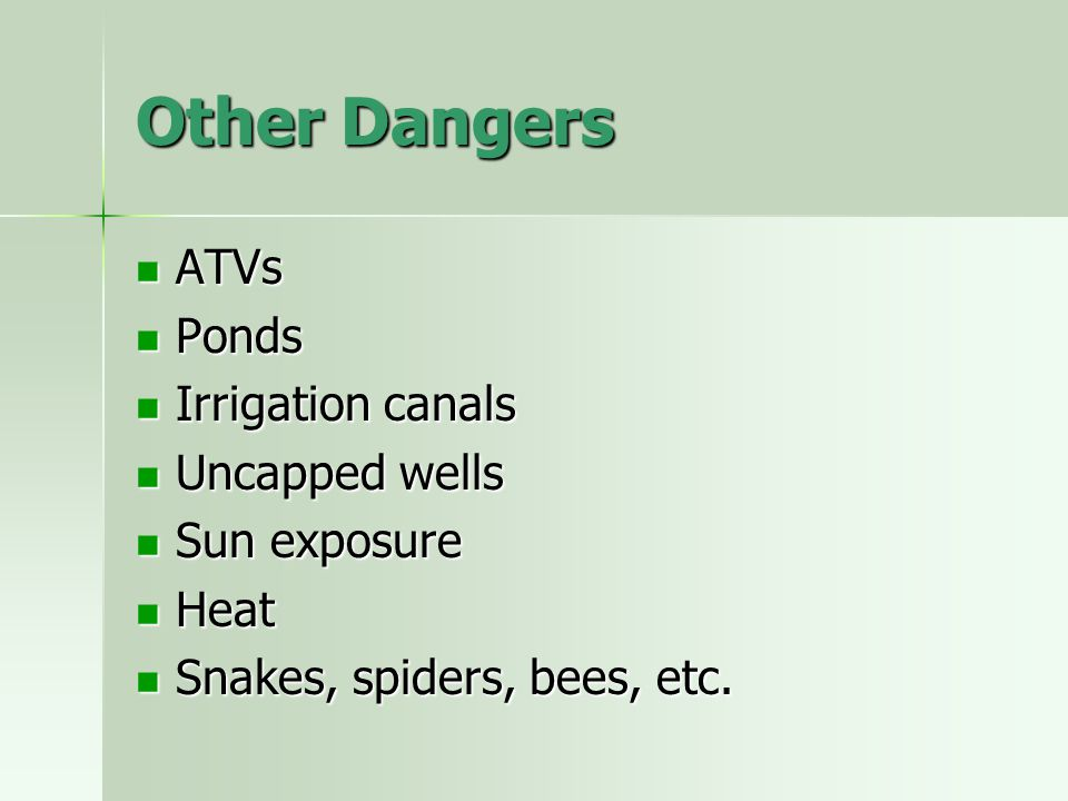 Other Dangers ATVs Ponds Irrigation canals Uncapped wells Sun exposure
