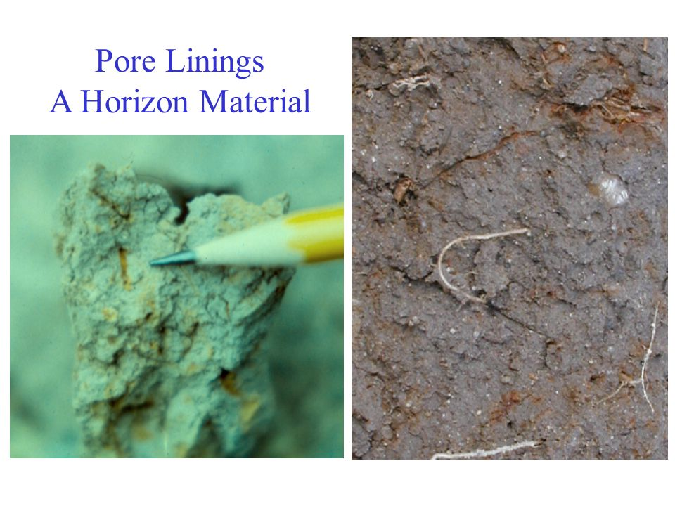 Pore Linings A Horizon Material