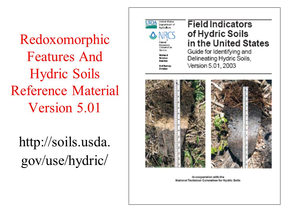 Redoxomorphic Features And Hydric Soils Reference Material Version 5