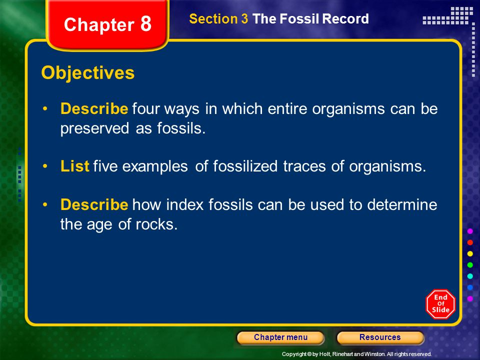 Chapter 8 Section 3 The Fossil Record. Objectives. Describe four ways in which entire organisms can be preserved as fossils.