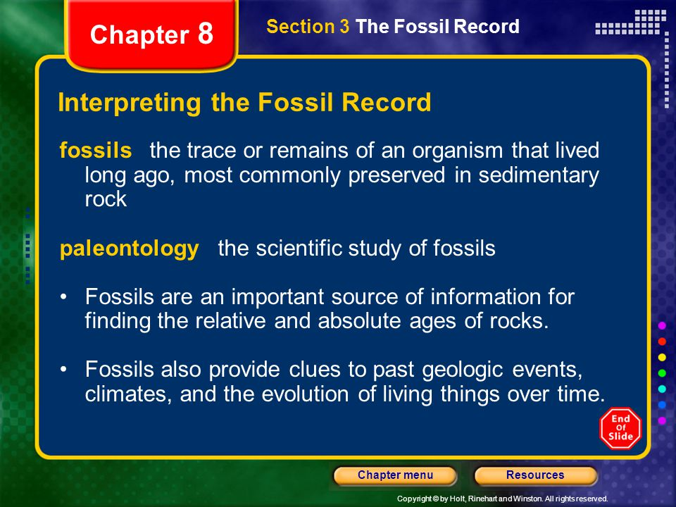 Interpreting the Fossil Record