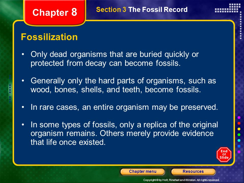 Chapter 8 Fossilization