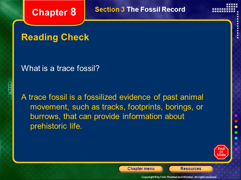 Chapter 8 Reading Check What is a trace fossil