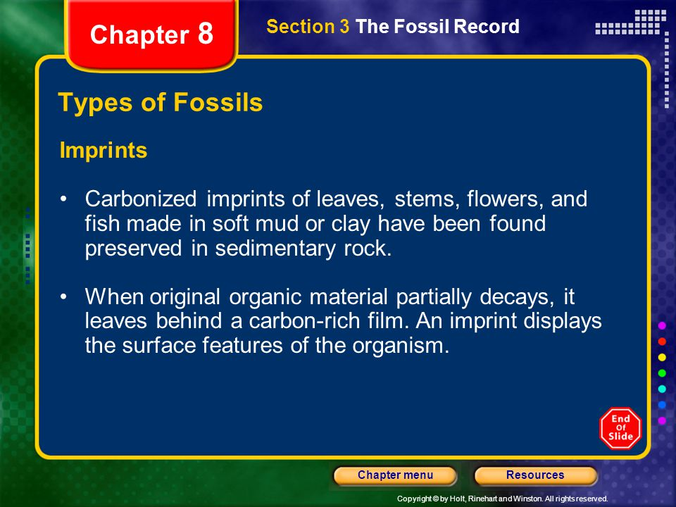 Chapter 8 Types of Fossils Imprints