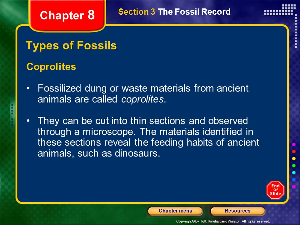Chapter 8 Types of Fossils Coprolites