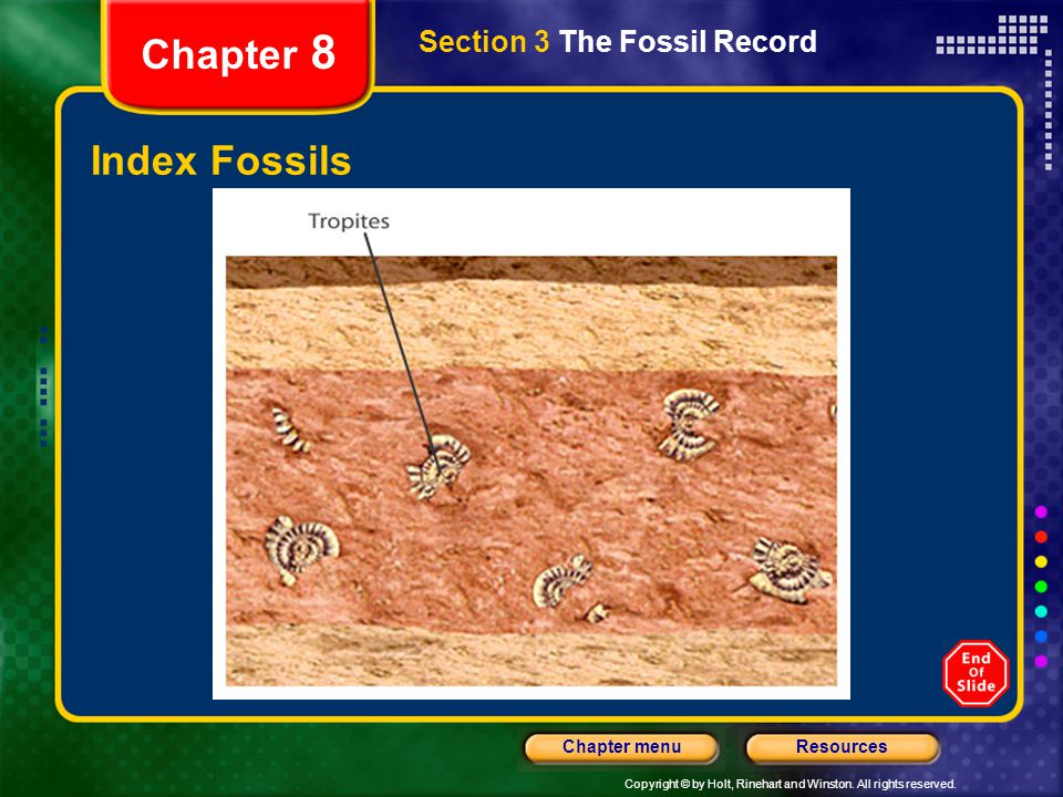Chapter 8 Section 3 The Fossil Record Index Fossils
