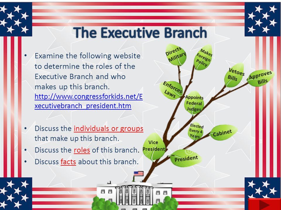 The Executive Branch Approves. Bills. Vetoes. Directs. Military. Makes. Foreign. Policy. Enforces.