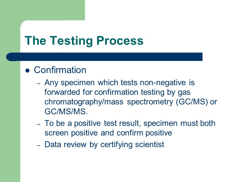 The Testing Process Confirmation