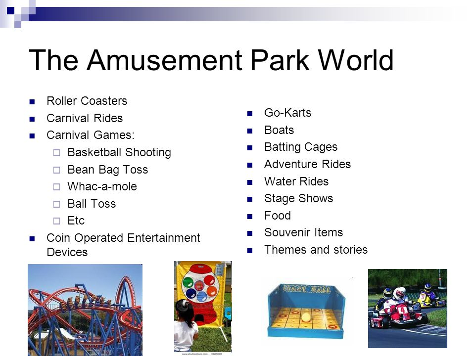 The Amusement Park World