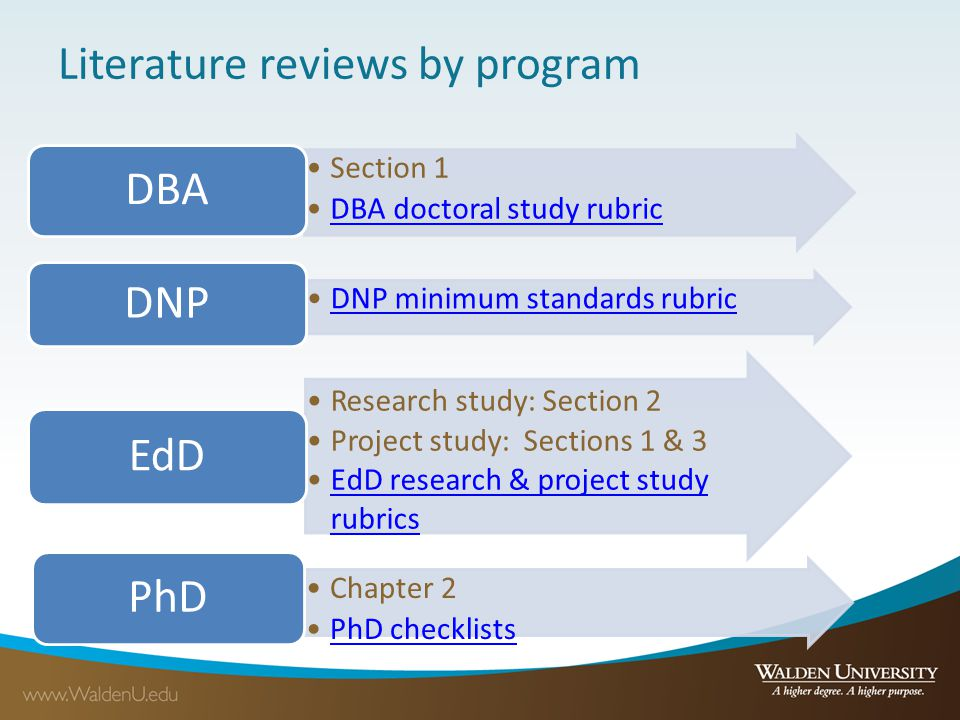 disadvantages of literature review in a research project