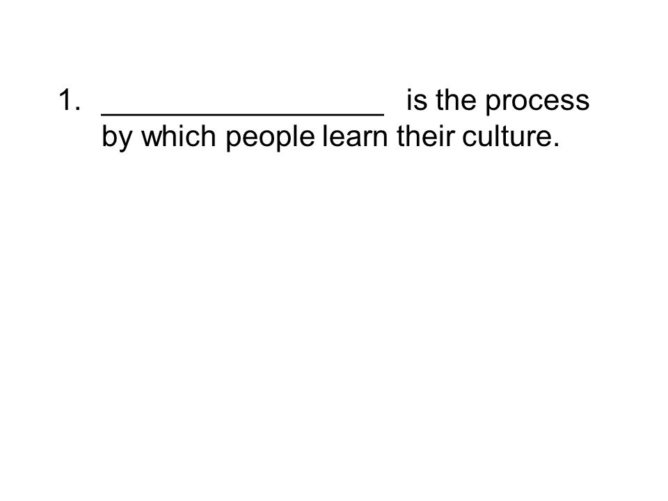 _________________ is the process by which people learn their culture.