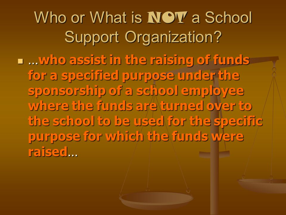 Who or What is NOT a School Support Organization