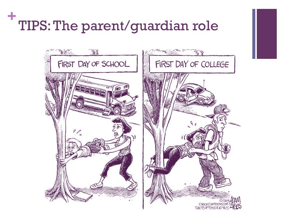 TIPS: The parent/guardian role