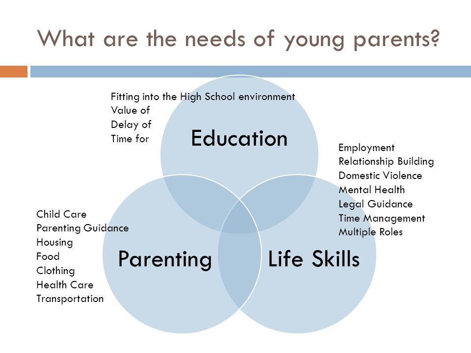 What are the needs of young parents