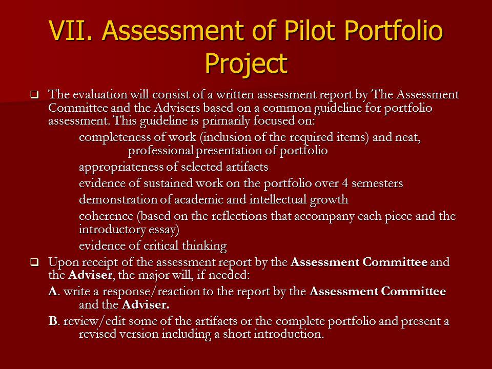 VII. Assessment of Pilot Portfolio Project