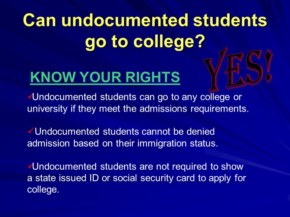 Can undocumented students go to college