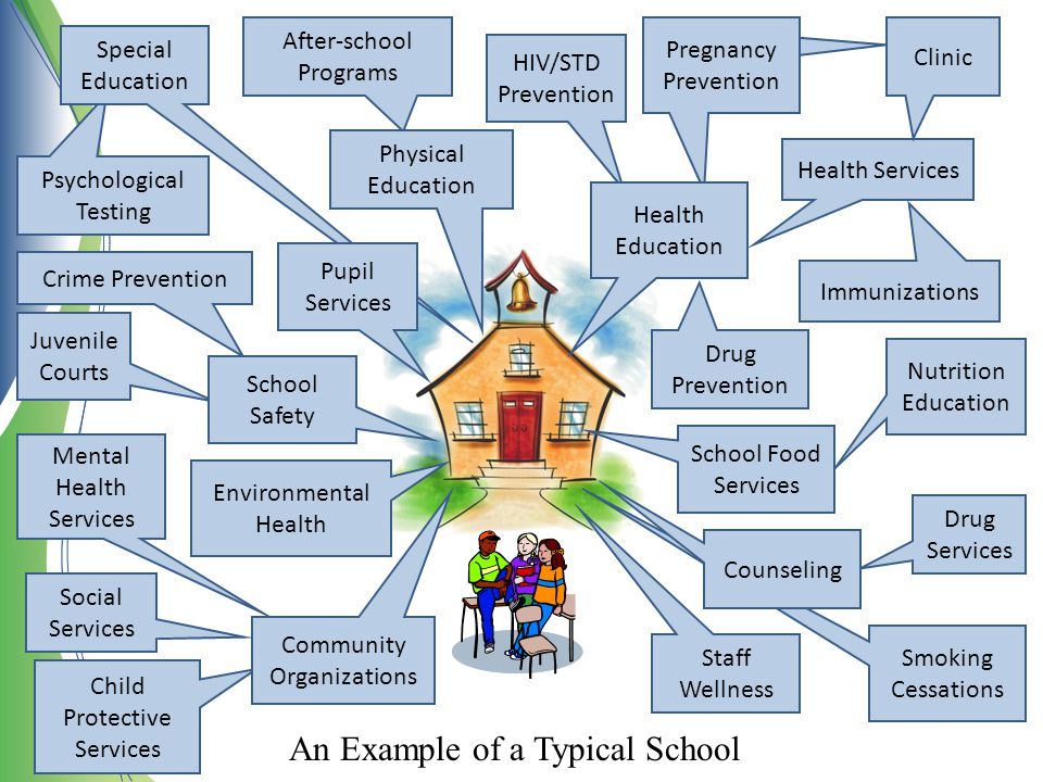 An Example of a Typical School