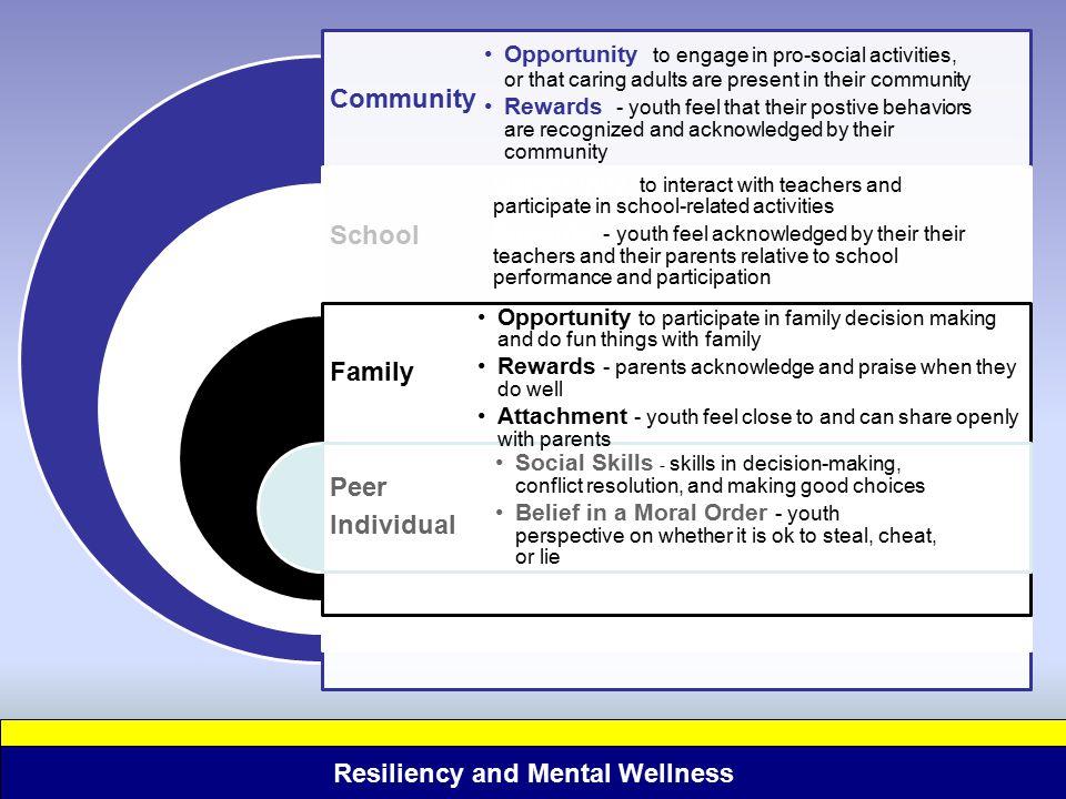 Community School Family Peer Individual