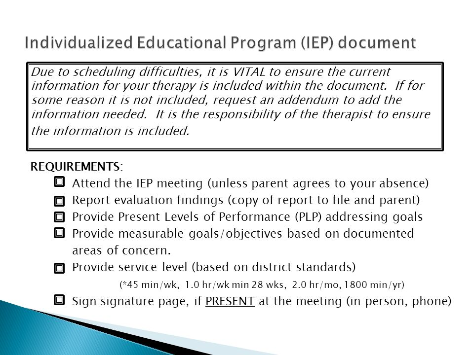 Individualized Educational Program (IEP) document