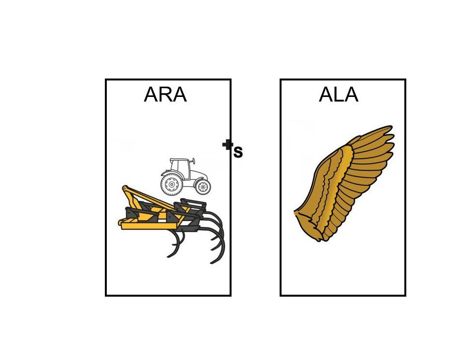 ARA ALA