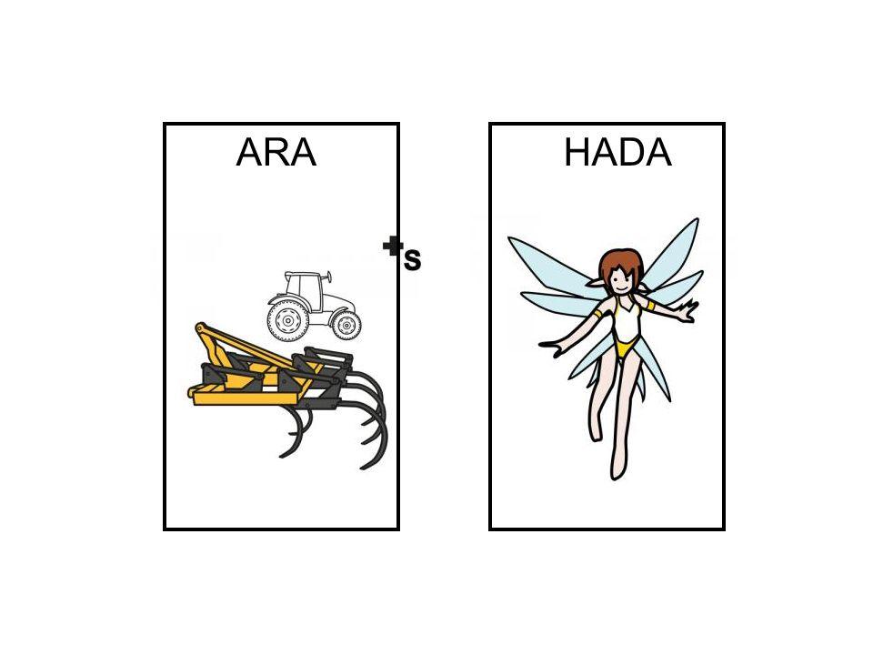 ARA HADA
