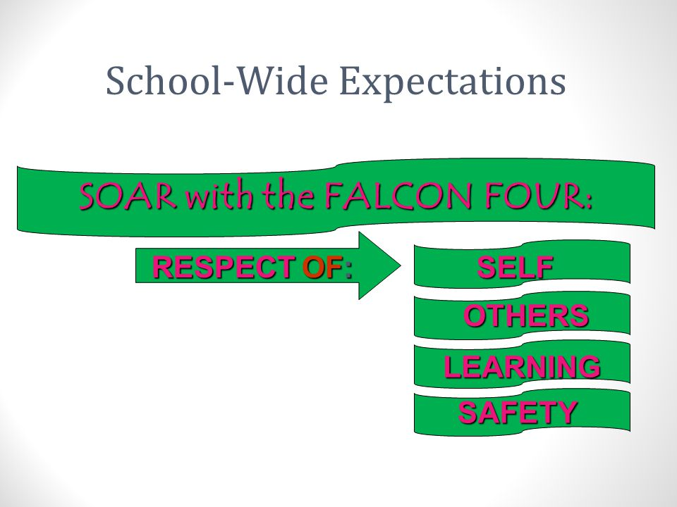 SOAR with the FALCON FOUR: