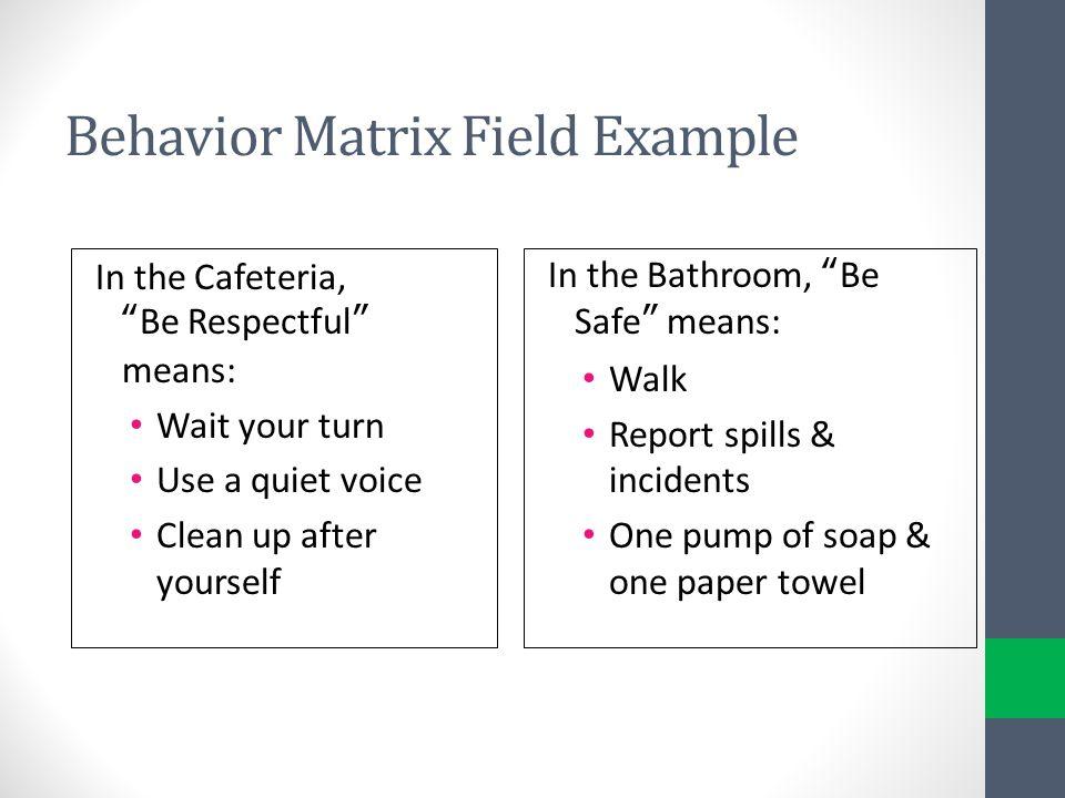 Behavior Matrix Field Example