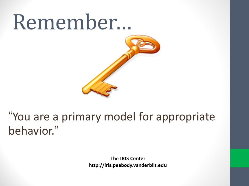 You are a primary model for appropriate behavior.