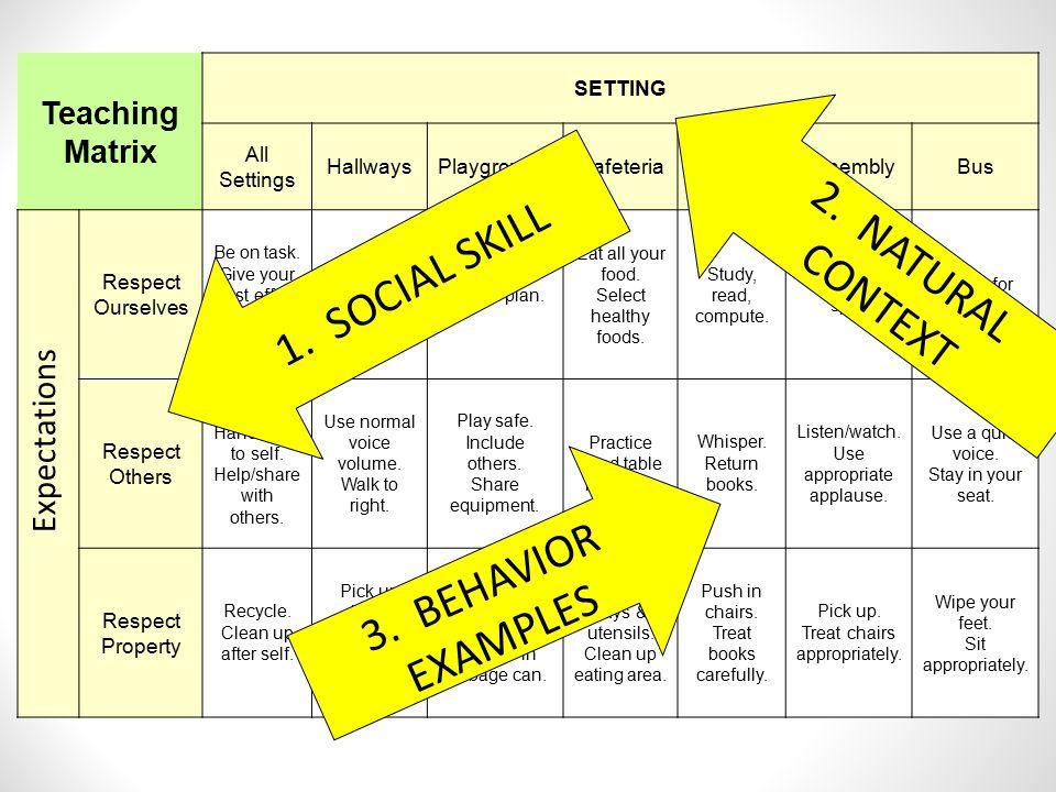 2. NATURAL CONTEXT 1. SOCIAL SKILL 3. BEHAVIOR EXAMPLES Expectations