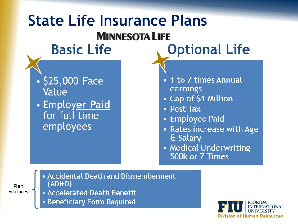 State Life Insurance Plans