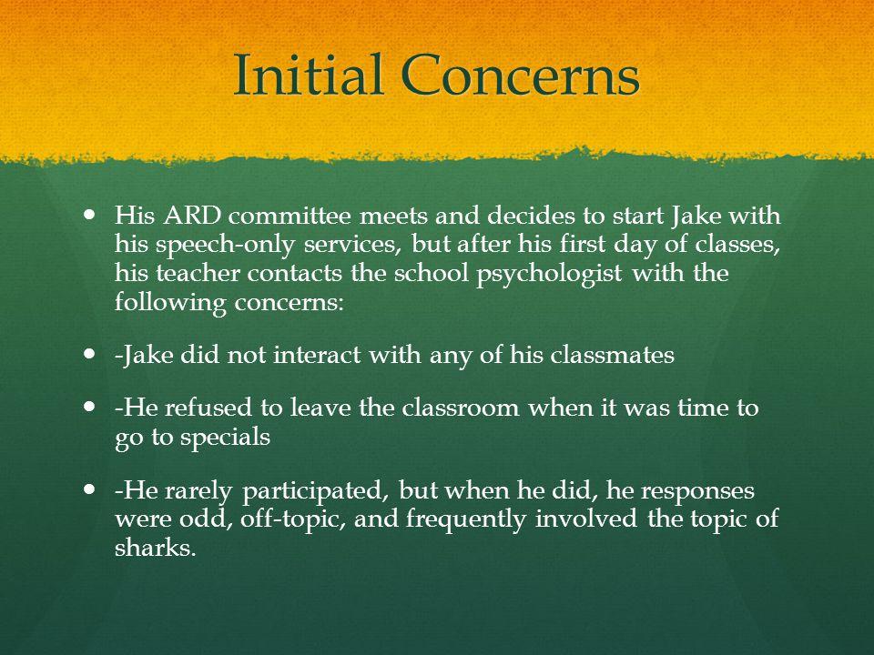 Initial Concerns