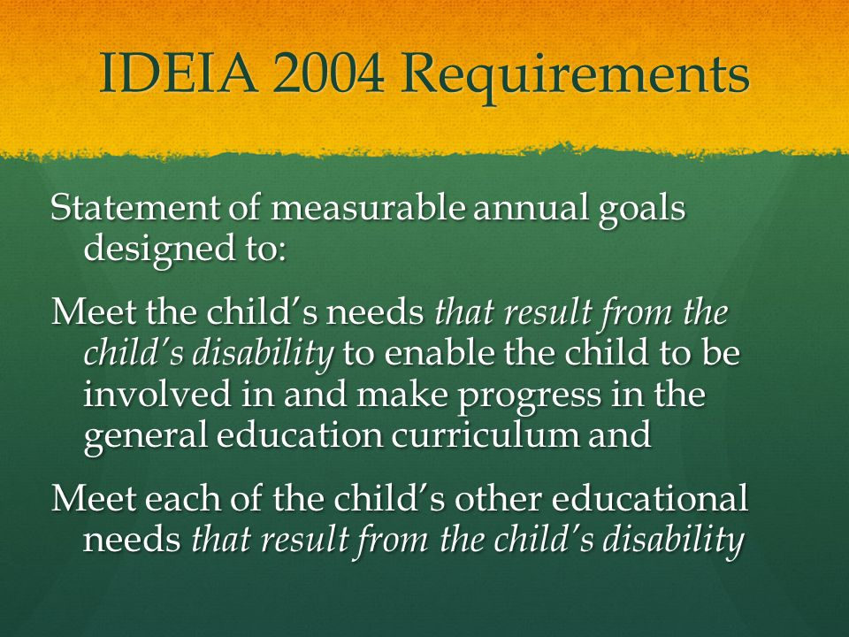 IDEIA 2004 Requirements