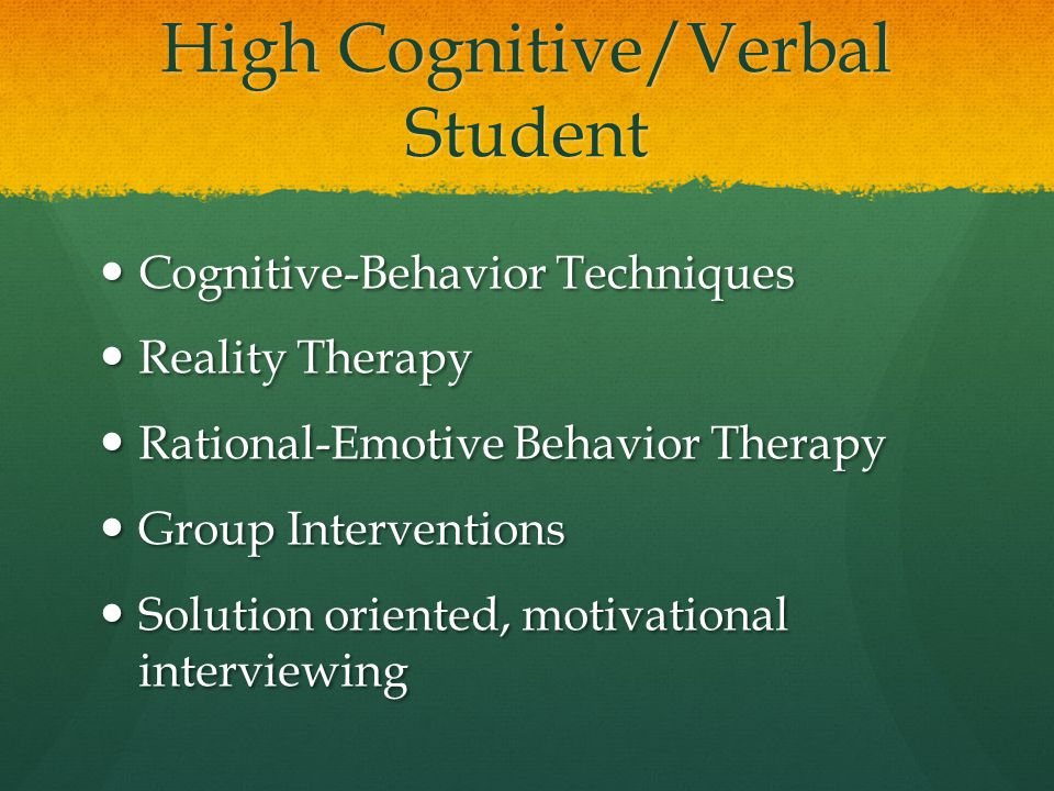 High Cognitive/Verbal Student