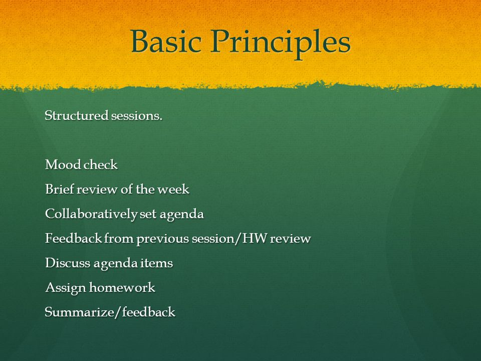 Basic Principles Structured sessions. Mood check