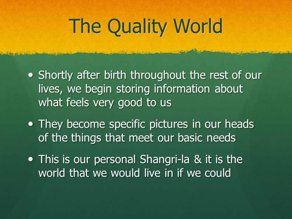 The Quality World Shortly after birth throughout the rest of our lives, we begin storing information about what feels very good to us.